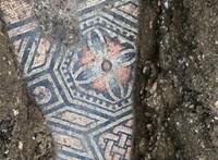 Római kori mozaikpadlóra bukkantak egy olasz szőlőültetvény alatt