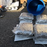 Tízmillió forintnyi füvet cipelt éppen a drogdíler, amikor igazoltatták a rendőrök