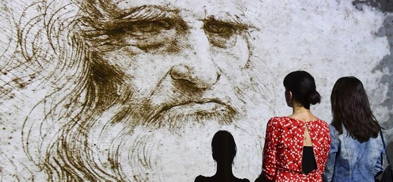 Titkos jelek után vizsgálódtak Leonardo da Vinci alkotásain, mikroélőlényekre bukkantak