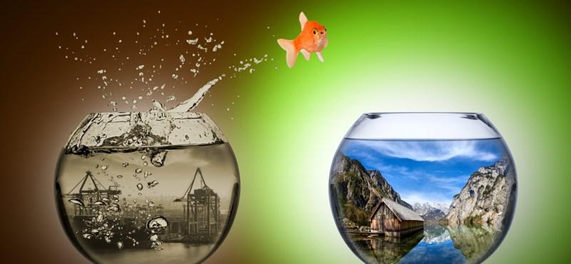 Ne higgye el, hogy nem lehet megújulni! 9 tipp bátraknak
