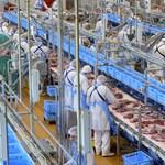 Százötvennél is több húsipari munkás kapta el a koronavírust Romániában