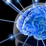 Sokat olyat tud még az emberi agy, amiknél a mesterséges intelligencia labdába sem tud rúgni