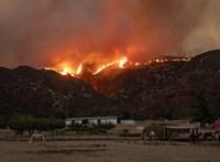 Bozóttüzek tombolnak Kaliforniában, 8 ezer embert kellett evakuálni