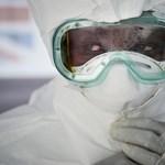 """Készüljünk arra, hogy """"normálissá válik"""" a világban az ebola"""