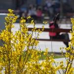 A szombatot ki kell bekkelni, aztán jön egy nap igazi tavasz