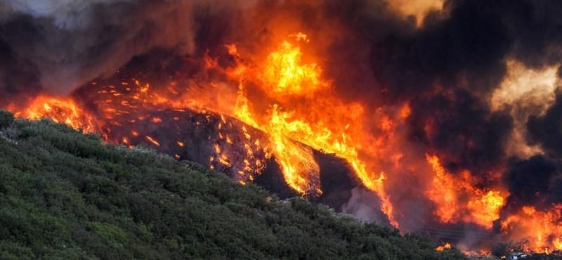 Erdőtűz ellenére sem hagyják el otthonaikat a síparadicsom makacs lakói