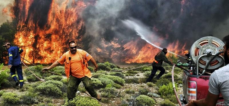 Görögországi tűzvész: sok az eltűnt, voltak, akik összeölelkezve vesztek oda – képek, videók