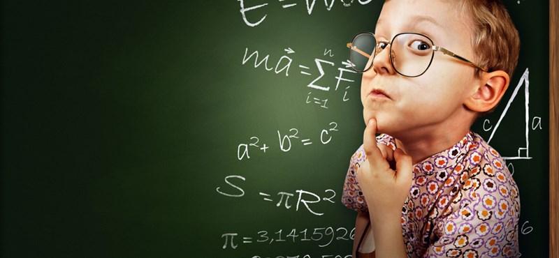 Zseniális teszt: mennyire jó a logikátok?