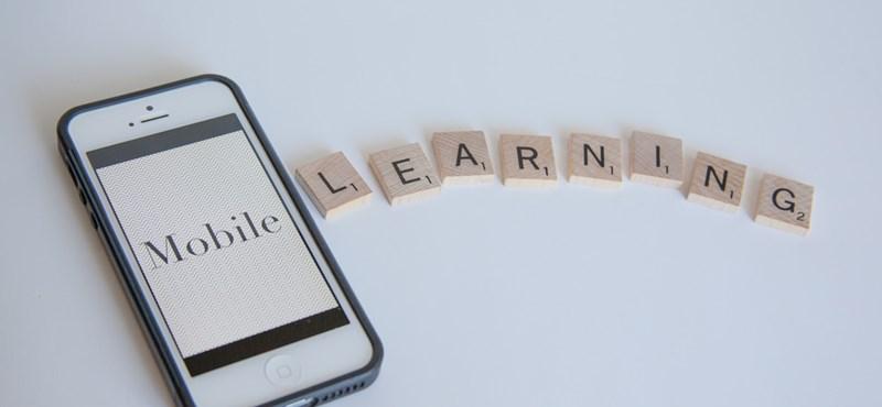 Ez a megoldás diákok milliói számára: erre (is) jó az online oktatás