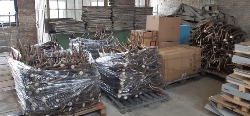 240 millióból készülnek a vadászati világkiállítás szobrai és az agancskapu