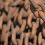 Letöltendőt kértek a kínzástól felismerhetetlenre torzult kutya gazdáira