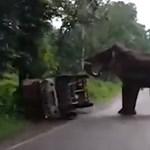 Ilyen könnyedén borít fel egy furgont egy morcos elefánt – videó