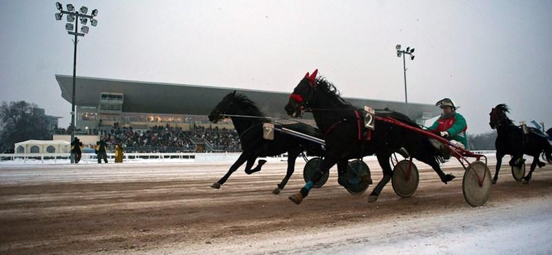 Megalakult a Kincsem Nemzeti Lóverseny Kft.