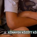 Lódarázs csípett meg egy lányt a Balatonnál, arra kiránduló fiú mentette meg