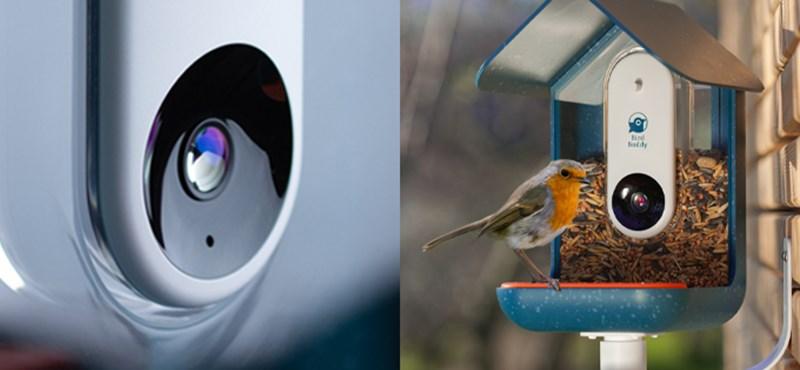 Ez a madaraknak készült etető a telefonon mutatja, ki dézsmálja a magokat