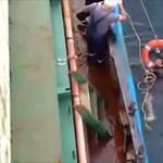 Műanyaghulladékba kapaszkodva menekült meg egy észak-koreai férfi a tengeren