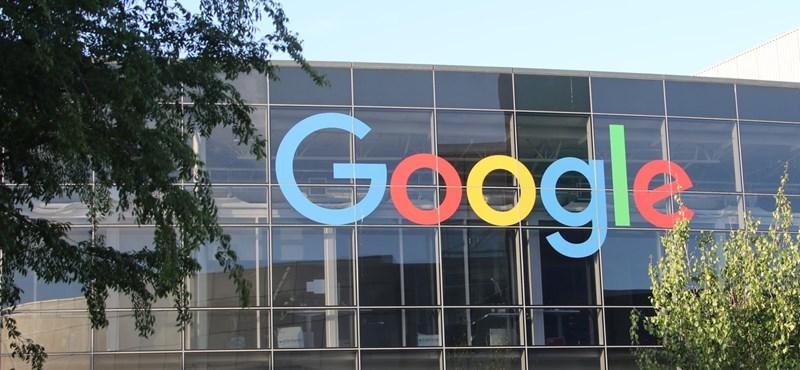 Megvett egy nagy területet a Google, építkezés helyett fát ültetnek rajta