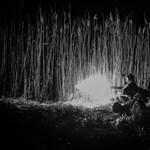 Katonáink, akik az első pofonokat kapják és adják - Nagyítás-fotógaléria