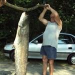 Fotó: gigantikus harcsaszörnyet fogtak Kaposvárnál