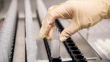 Eddig öt magyarnál mutatták ki a koronavírus delta mutánsát