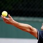 """Fucsovicsék újra tüzelnek, a teniszszövetség """"újabb ügyeiről"""" írnak"""