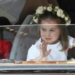 Charlotte hercegnő tökélyre fejlesztette a királyi integetést