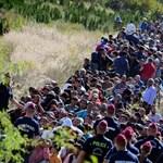Jöhet a menekültek kötelező szűrővizsgálata