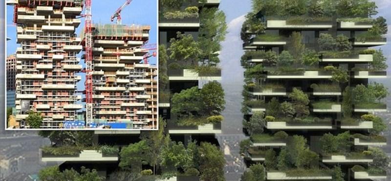 Erdő lesz a milánói ikertornyokban