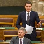 104 milliós osztalékot vett fel erdélyi agrárcégeiből Bánki Erik