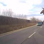 A bokrok közül ugrott ki a szarvas, centiken múlott a hatalmas baleset – videó