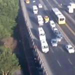 Videó: Így okoz tömegbalesetet a városi forgalomban egy sirály