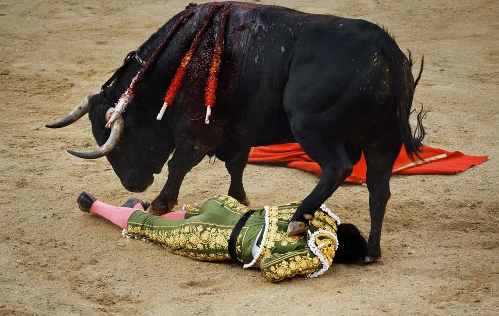 Bikaviadal spanyolországban