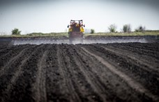 Európai Zöldek: Módszeres a magyar mezőgazdasági mutyi