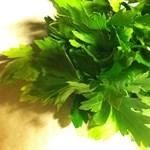Tökéletes nyári étkek petrezselyemmel - recept