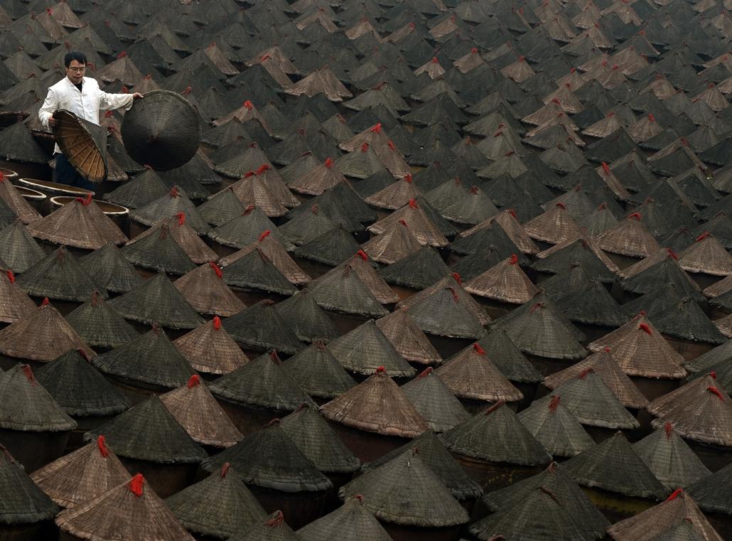 afp.yyyyy. - Chongqing, Kína: munkás az erjedő csilipaprikát tartalmazó agyagedények közt. A fűszer az egyik közkedvelt helyi étkezési formához, a ''hotpothoz'' szükséges. - a hét képei