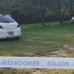 Rendőrkézen az érdi emberölés feltételezett elkövetője