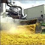 Bioüzemanyag-nagyhatalom lehet Magyarország