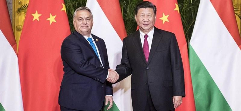 Kornai János Kínáról: Szörnyet teremtettünk