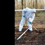 Megtalálták a Karcagon megölt nő holttestét