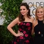 Itt vannak a Golden Globe-jelölések, Fehér Isten nélkül