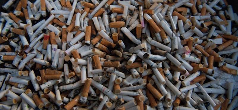 A NAV 105 milliós fogása: illegális cigarettaraktárat kapcsoltak le Budapesten