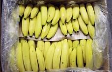 A világ legdrágább banánját falta be egy művész