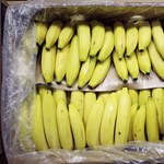 Kokain lapult a berlini Aldik banános dobozaiban