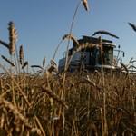 Elengedi a Monsanto márkanevet a Bayer