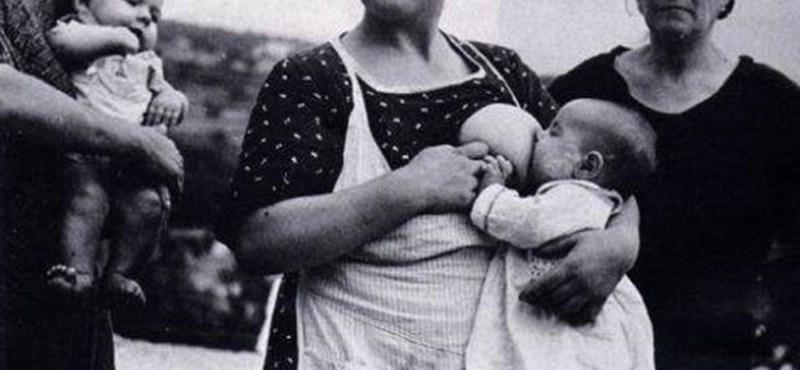 Katinak hívták Robert Capa igaz szerelmét?