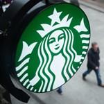 Nyolcéves gyerekek szedték a kávét a Starbucksnak és a Nespressónak