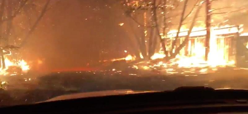 Így mentettek ki több száz lovat egy lángoló kaliforniai ménesből - videó
