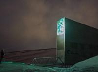 Kinyitották az ítéletnapi tárolót, ahol -18 Celsius-fokon 1000 éven át őrzik a magmintákat