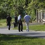 Hajtóvadászat az utakon: óriási dugót okozott a rendőri ellenőrzés