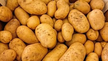 """A polgármester ajánlja a receptet az """"ingyen"""" krumpli mellé Újbudán"""
